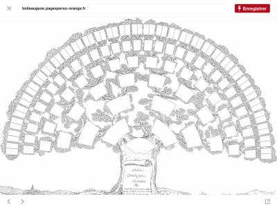 Faire son Arbre Genealogique